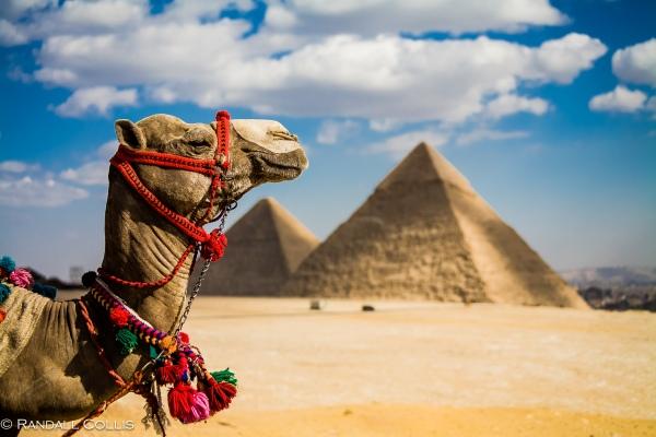 Egypt-2006-2