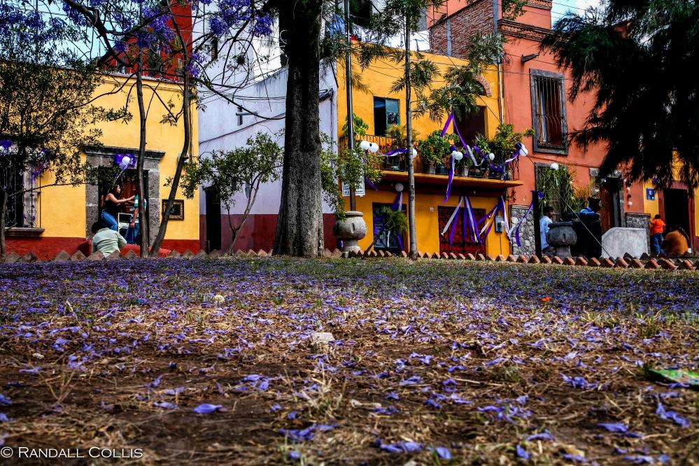San Miguel de Allende-2