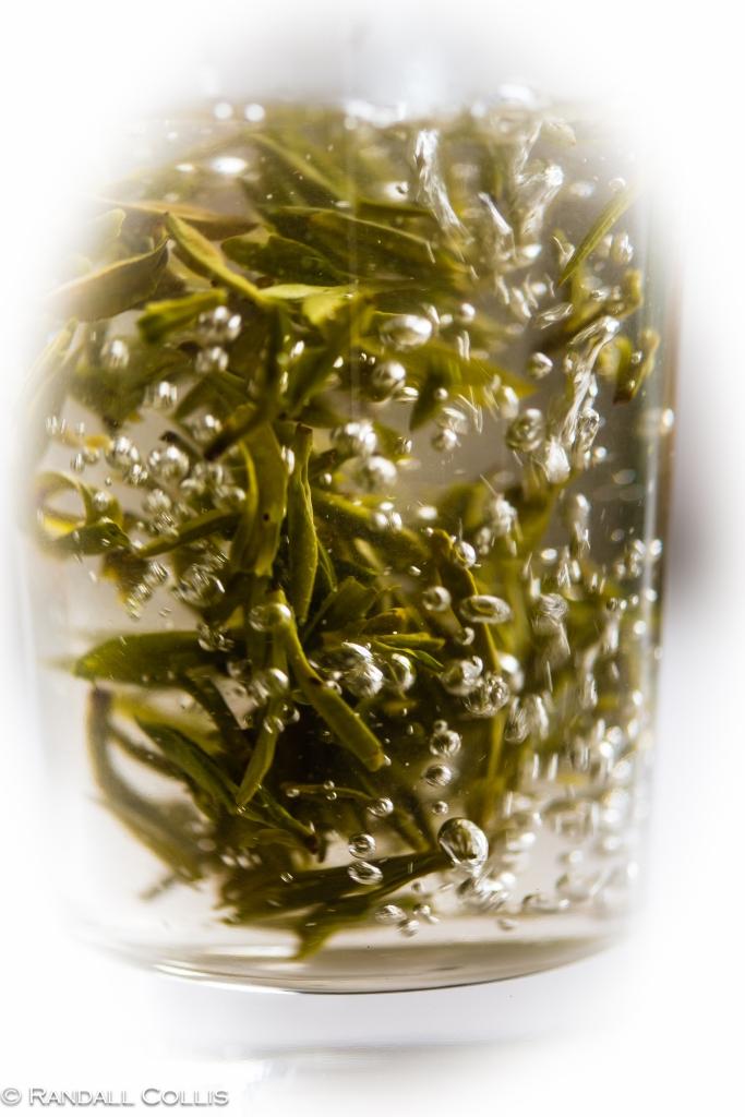 梅家坞龙井茶-2