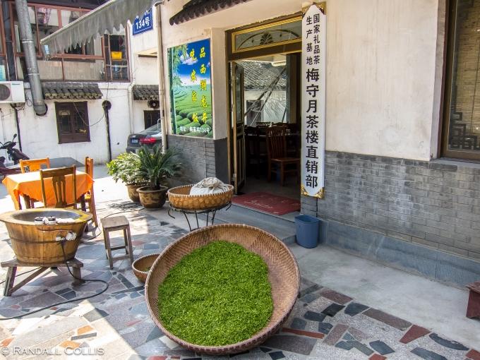 梅家坞龙井茶-24