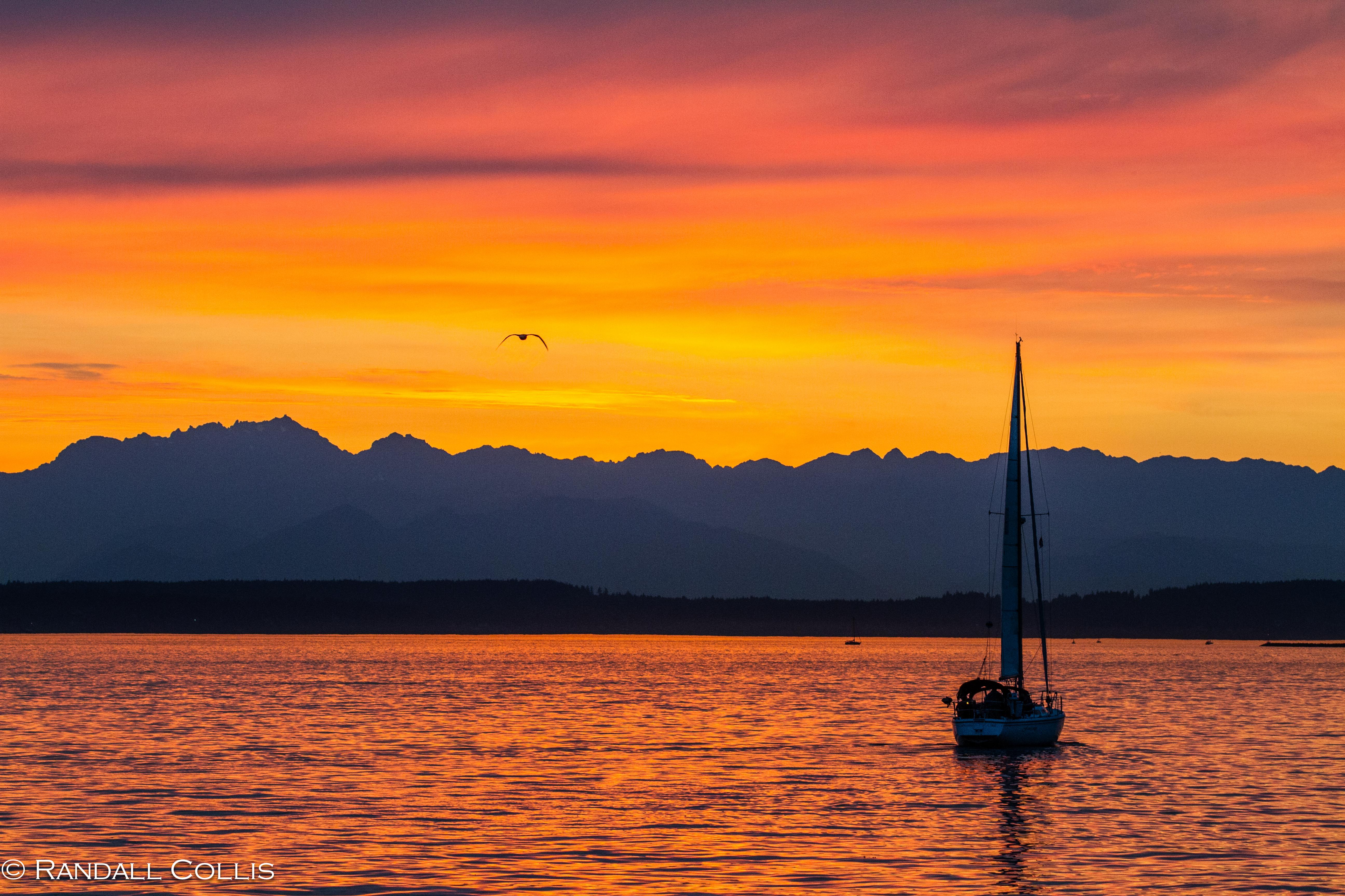 sunset on the seattle - photo #39
