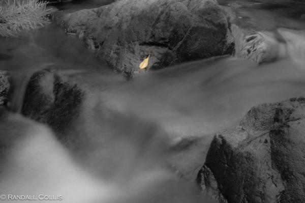 Flow of Water-6