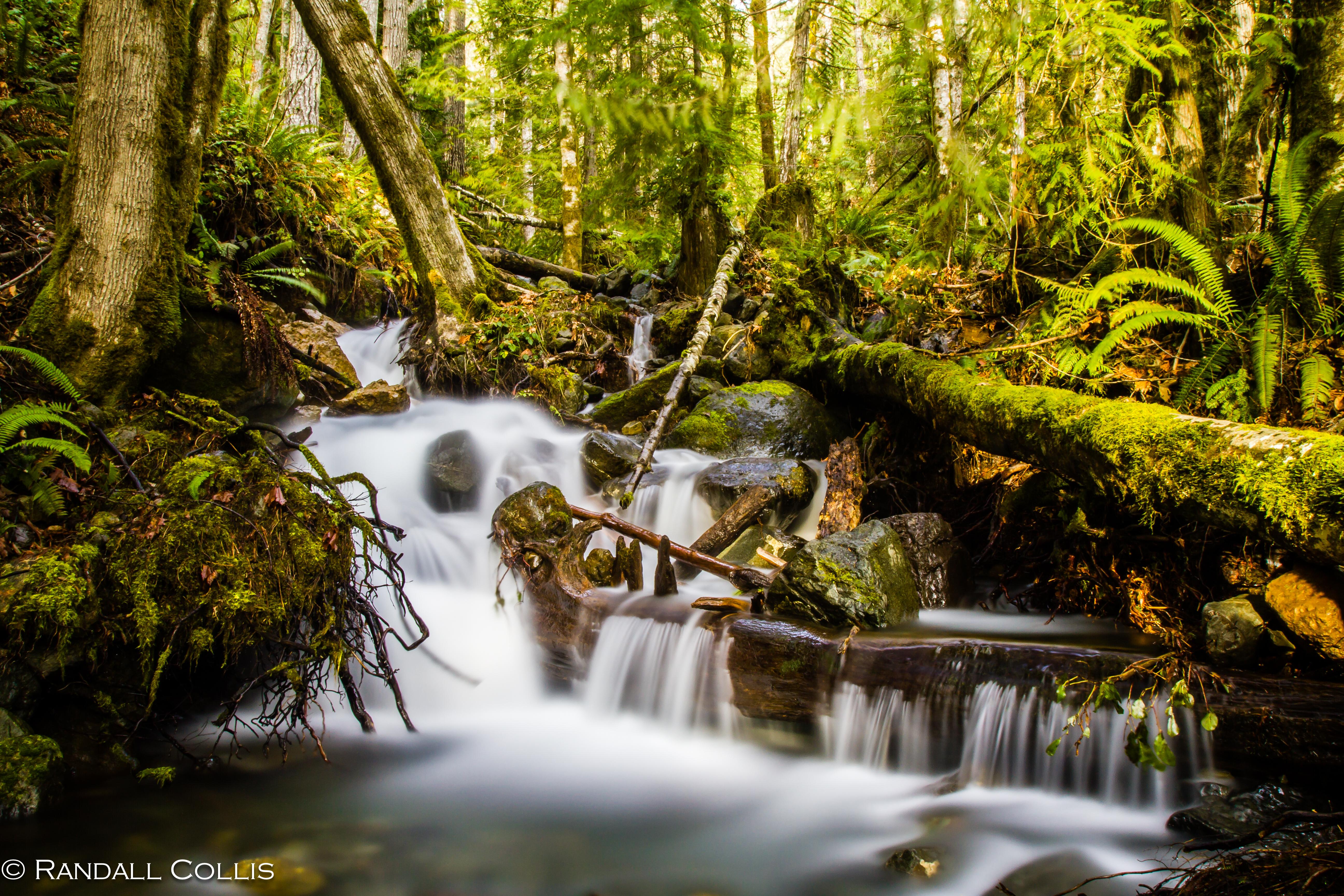 Flow of Water-8