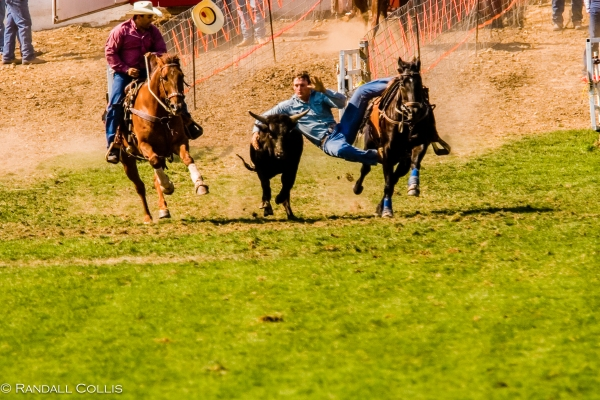 Pendleton Round-Up-1