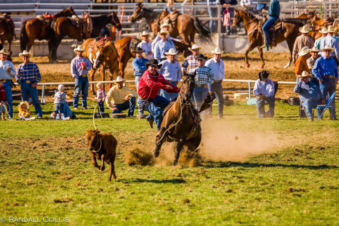 Pendleton Round-Up-10
