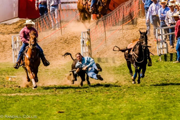 Pendleton Round-Up-2