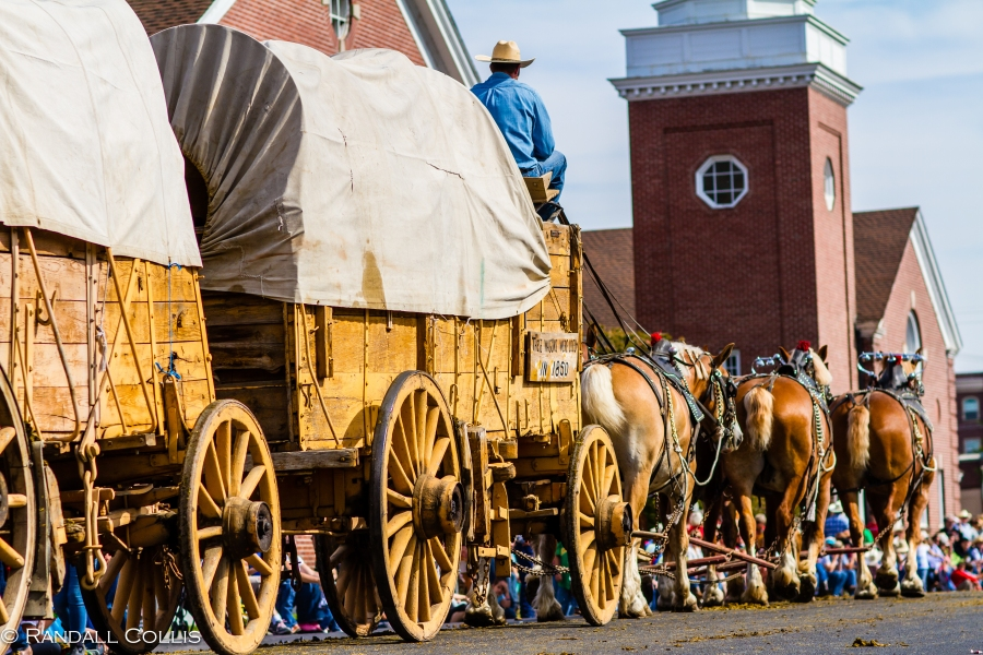 ~ The Westward Ho Parade ~ Unique in that there are no motorized vehicles allowed