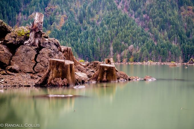 Skokomish Wilderness Olympic National Forest-4