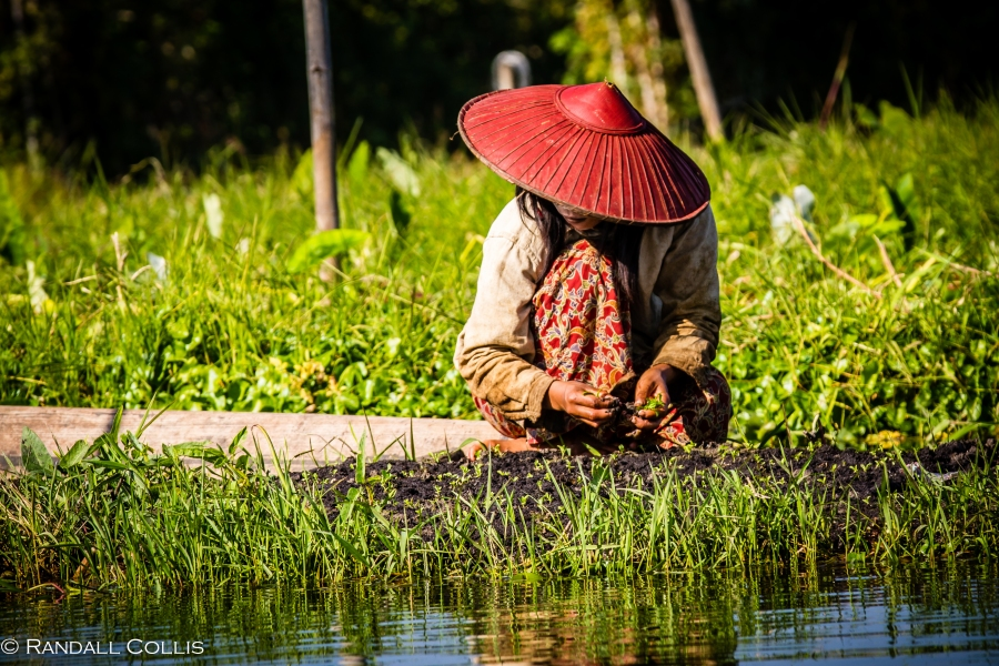 Inle Lake Women of Myanmar - Men In Management-17