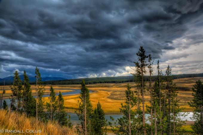 Pacific Northwest Nature-11