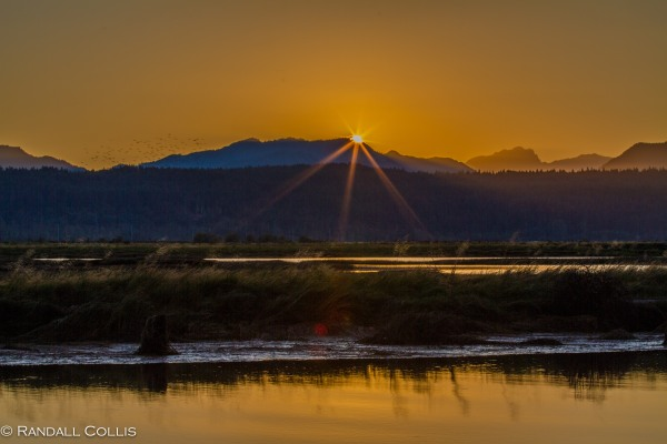 Pacific Northwest Nature-5