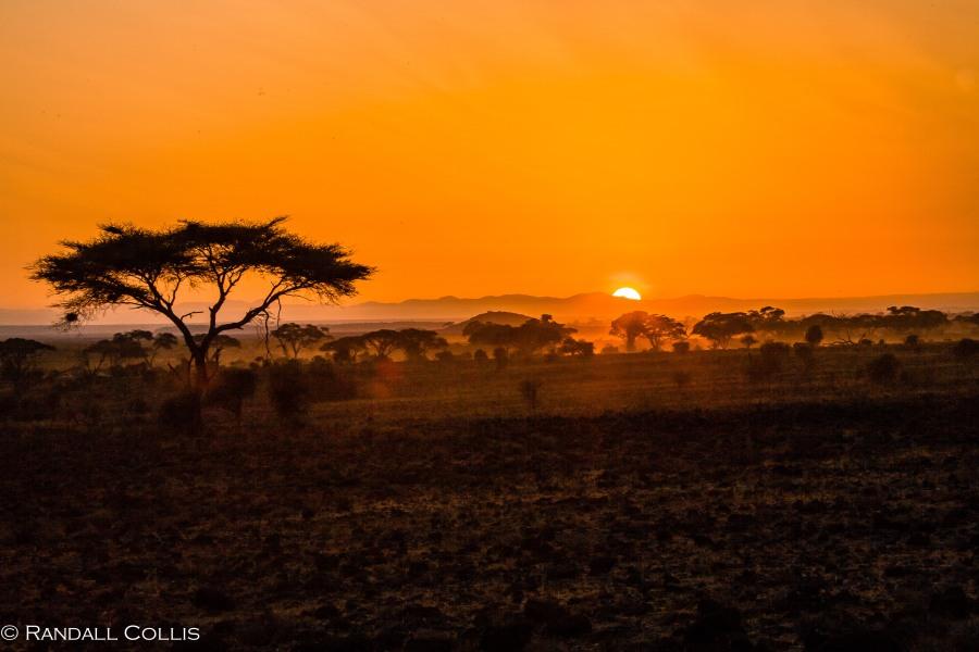 Kenya Maasai Mara Africa-77