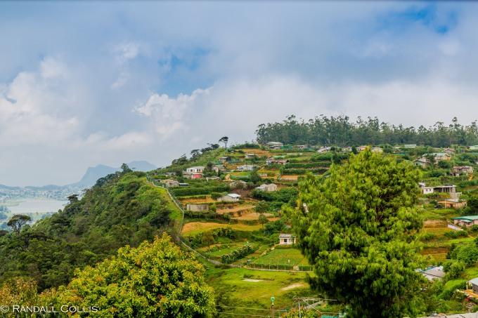 Nuwara Eliya - Sri Lankan Tea Plantations-24