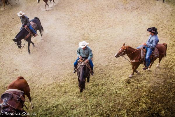 Pendleton Round-Up Let'er Buck - Life of a Cowboy-1