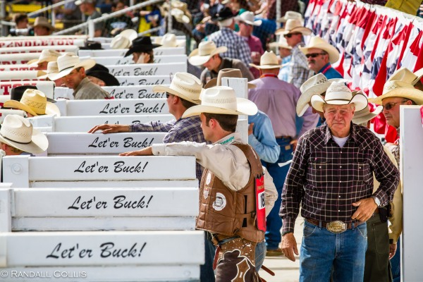 Pendleton Round-Up Let'er Buck - Life of a Cowboy-11