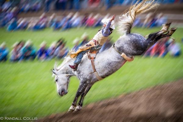 Pendleton Round-Up Let'er Buck - Life of a Cowboy-12