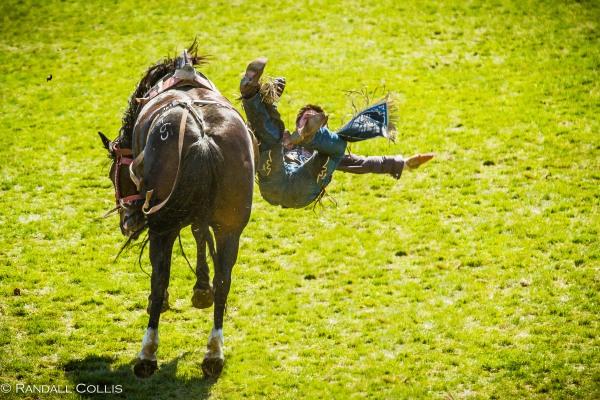 Pendleton Round-Up Let'er Buck - Life of a Cowboy-13
