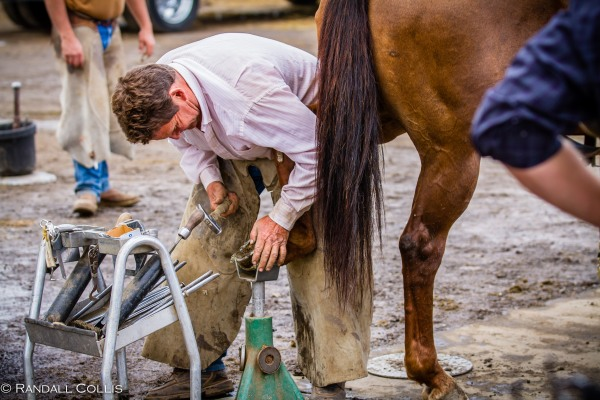 Pendleton Round-Up Let'er Buck - Life of a Cowboy-18