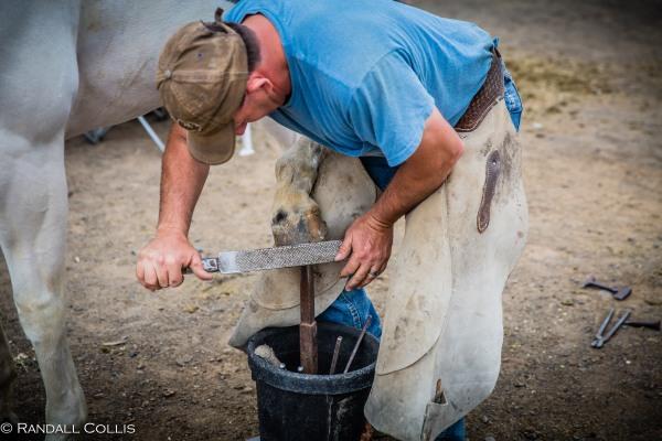 Pendleton Round-Up Let'er Buck - Life of a Cowboy-19