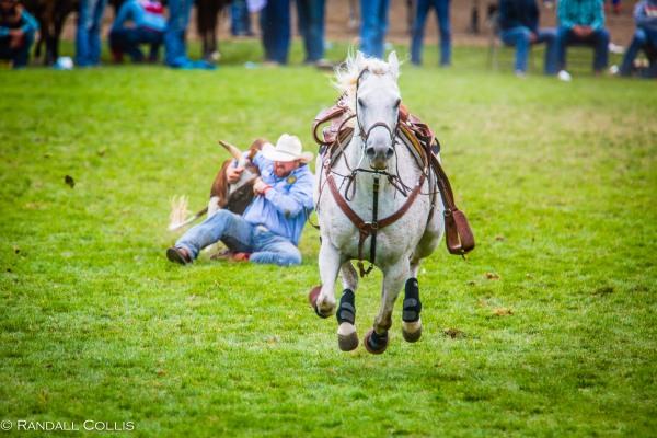 Pendleton Round-Up Let'er Buck - Life of a Cowboy-3