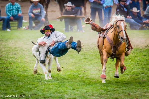 Pendleton Round-Up Let'er Buck - Life of a Cowboy-4