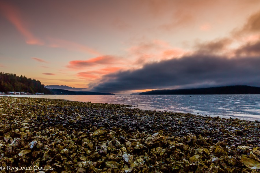 olympic-national-forest-hood-canal-1