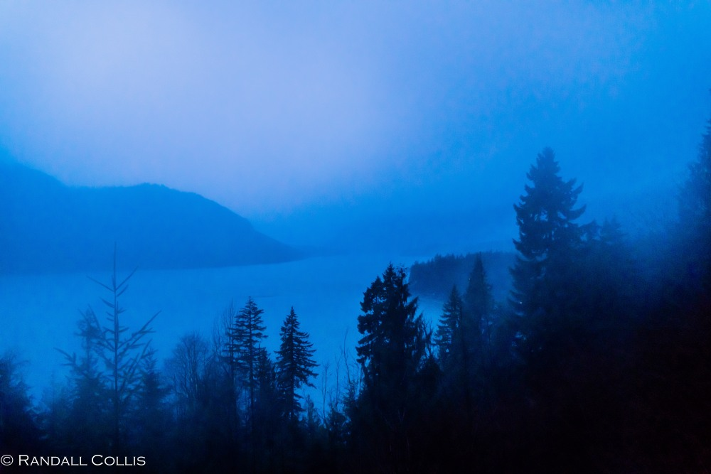 olympic-national-forest-hood-canal-5