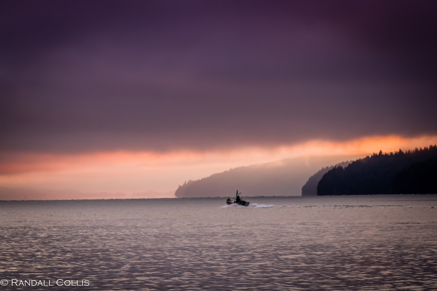 olympic-national-forest-hood-canal-7