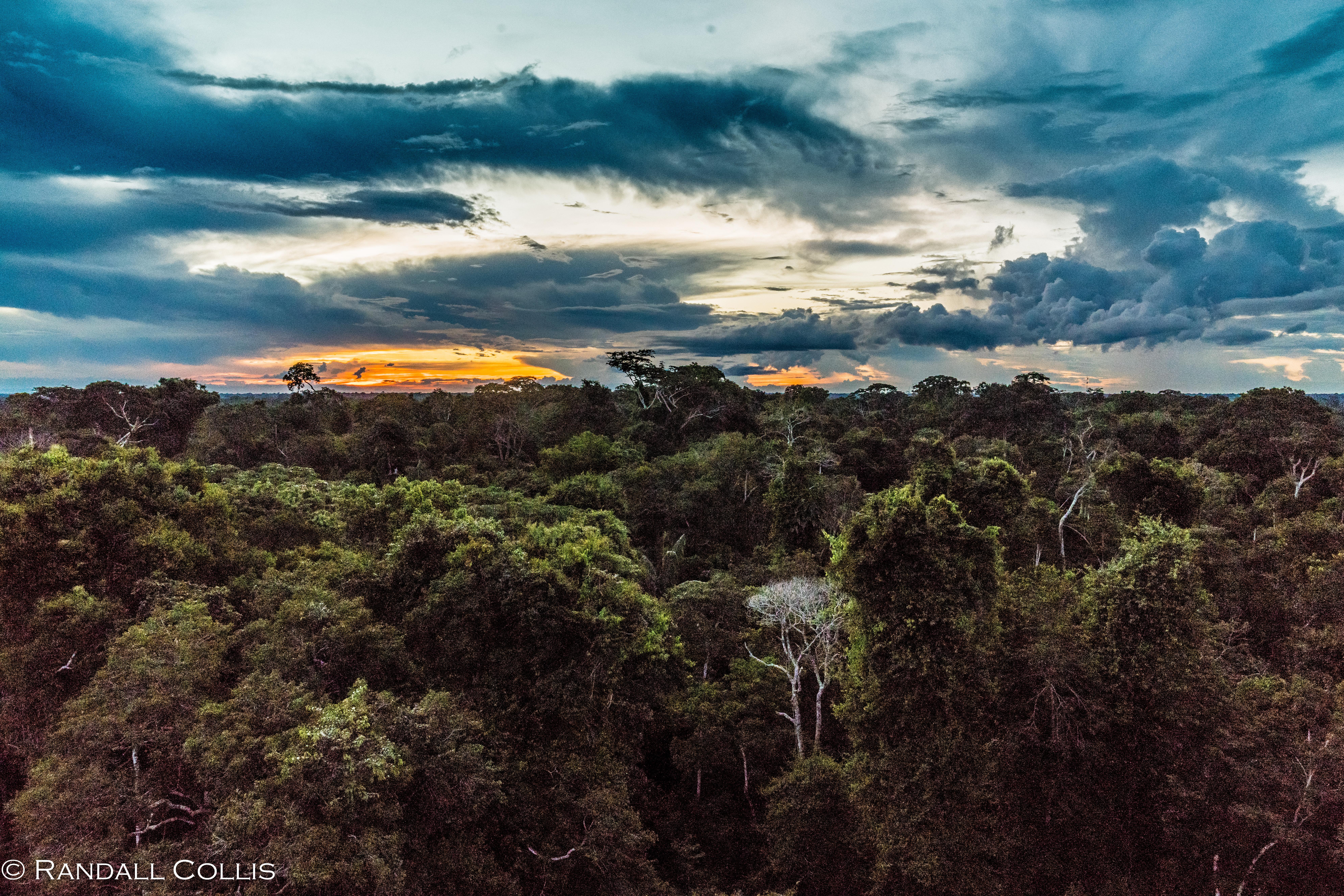 Perú - Rhythm of the Amazon -3